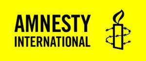 https://www.prografix.co/wp-content/uploads/2019/01/Amnesty-International-300x126.png